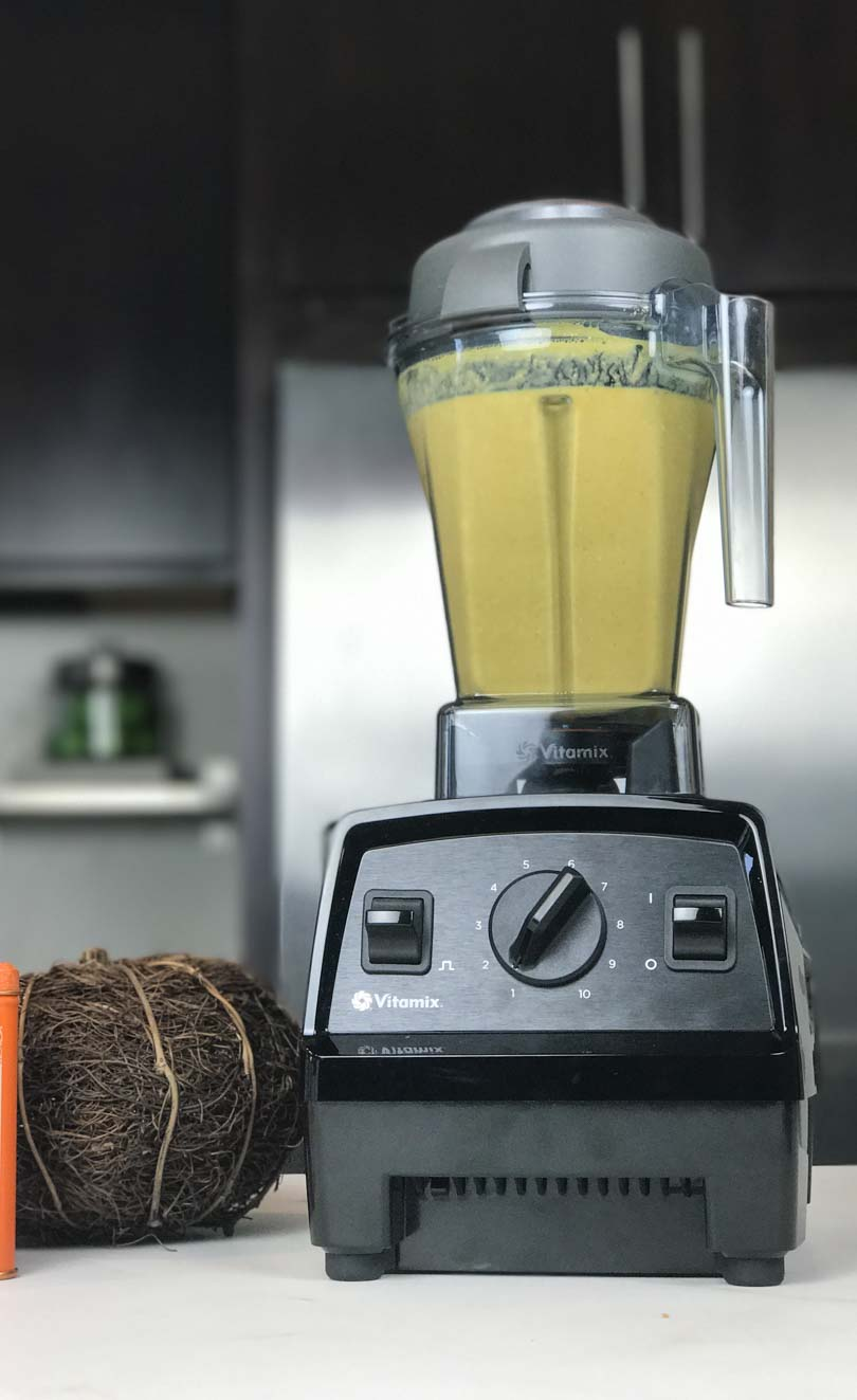Pumpkin smoothie in our new Vitamix E310.