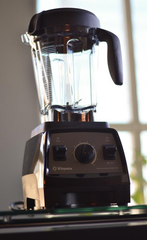 Picture of Vitamix Pro 300 tall