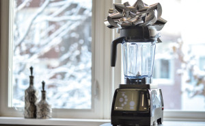 holiday special vitamix 780 silver bow
