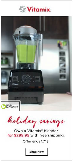 Vitamix Holiday Savings 2017 showing Explorian E310 with green smoothie on sale for $299