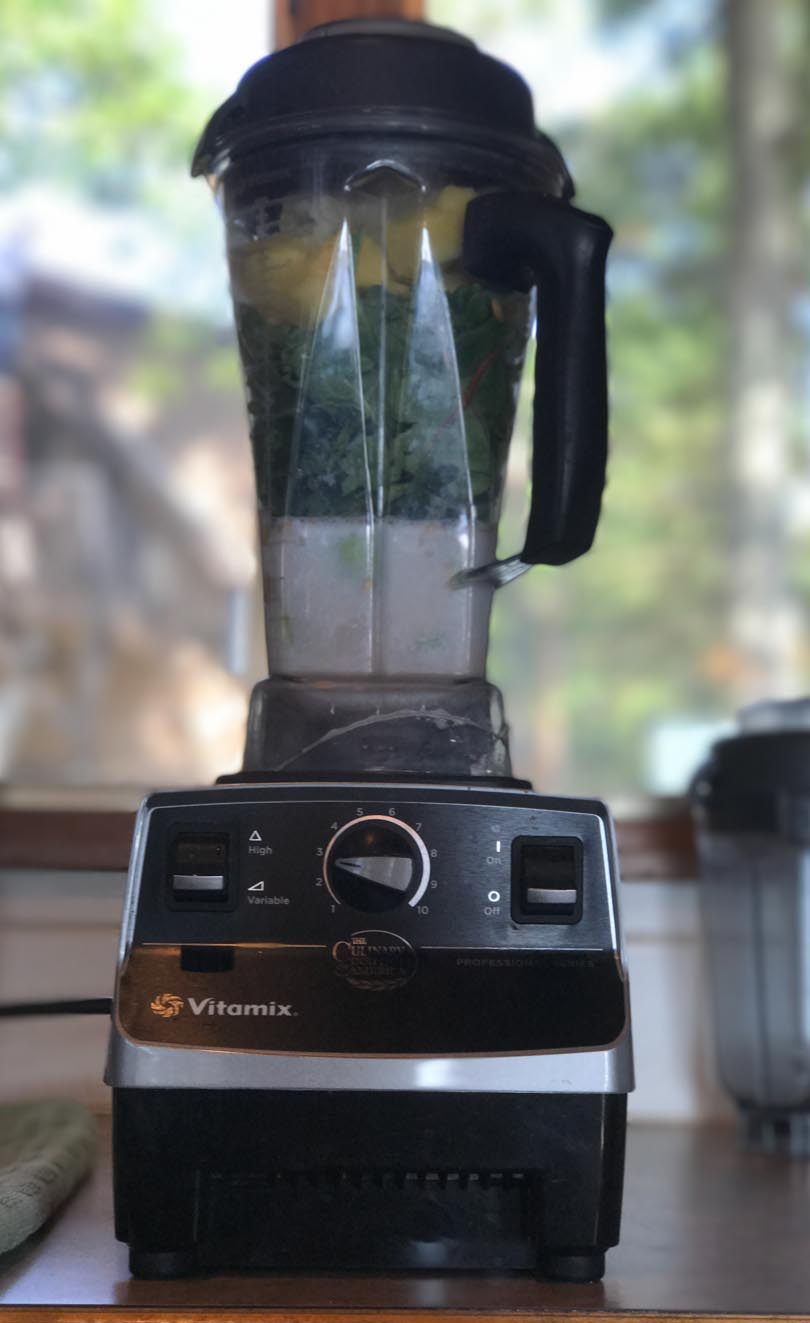 Vitamix Pro 500 ready to blend at the lake.