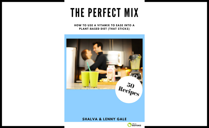 Perfect Mix book cover 2018