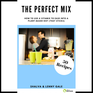 The Perfect Mix book by Shalva and Lenny Gale of Life is NOYOKE.