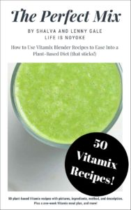 The Perfect Mix Vitamix Recipe book by Shalva and Lenny Gale 2018 cover with green juice.