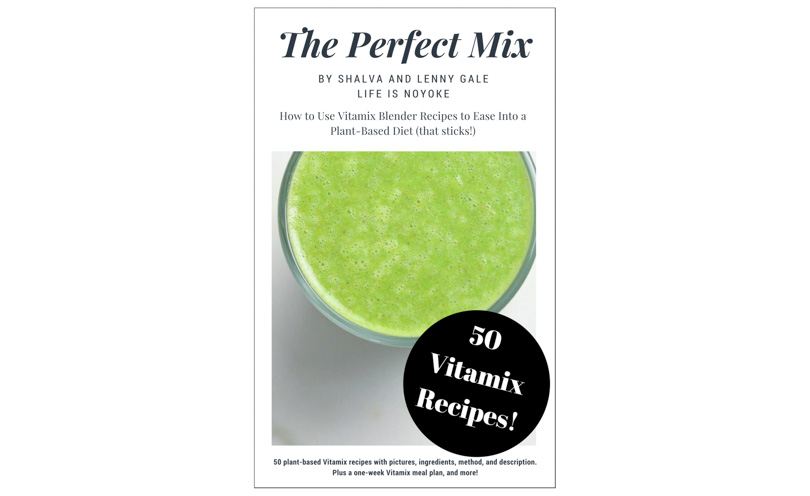 The Perfect Mix Vitamix Recipe Book by Shalva and Lenny Gale of Life is NOYOKE.