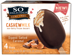 so delicious dipped salted caramel ice cream bars