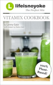 Life is noyoke's VItamix cookbook The Perfect Mix v3.0